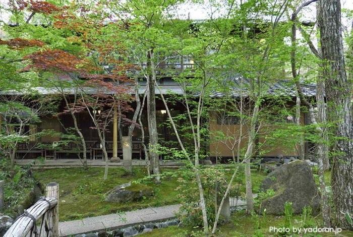 Oyado Nihon no Ashitaba